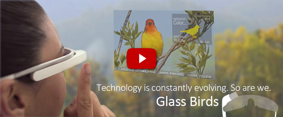 iBird Home Google Glasses